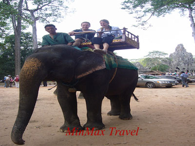 Ride on the back of an elephant in Siem Reap