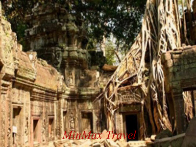 Ta Prohm Temple in Siem Reap
