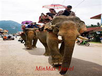 Ride Elephant in Elephant Camp
